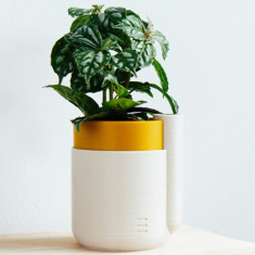 3d printed pot plant self watering